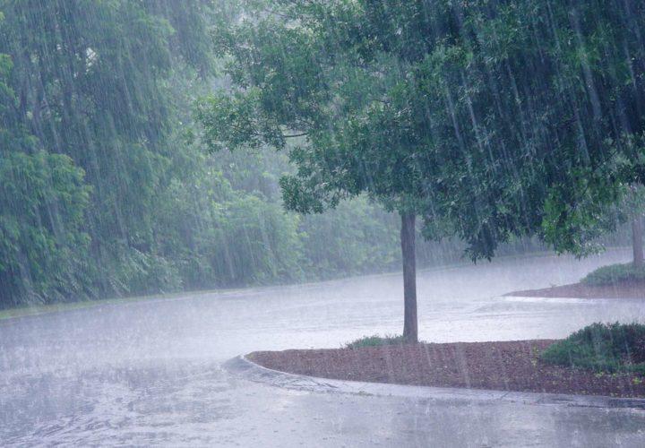 L'infiltration des eaux pluviales et les tests de perméabilité (vidéo)